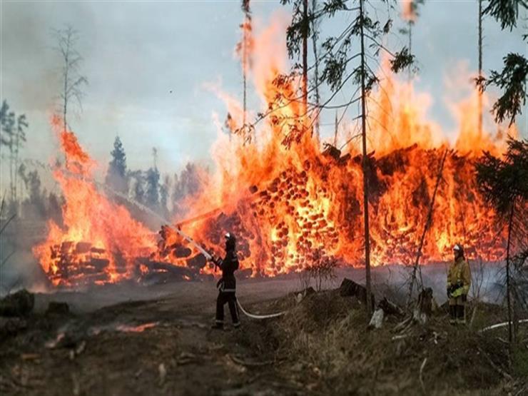 الحرائق تلتهم 17.6 مليون هكتار من الغابات في روسيا - المواطن