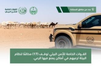 الأمن البيئي يوقف 17 مخالفًا لنظام البيئة لارتكابهم مخالفات رعي - المواطن