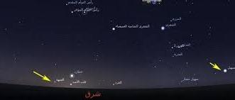 الحصيني: اليوم الاثنين أول أيام موسم الصفري - المواطن