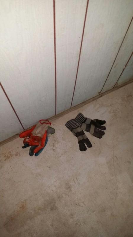 بالصور.. الإطاحة بعصابة تنكرت في زيٍّ باكستاني لسرقة الخِزَن بالرياض - المواطن