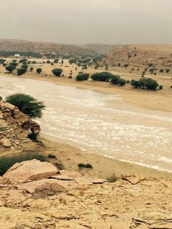 بالصور.. أمطار متفرقة على مراكز محافظة #الخرج