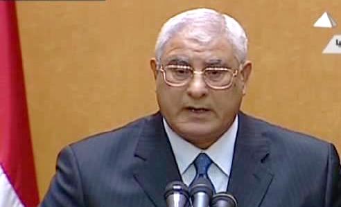 منصور يكلف الببلاوي برئاسة الحكومة والبرادعي نائبا للرئيس - المواطن