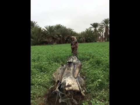 بقايا صاروخ الحوثيين الباليستي على #نجران
