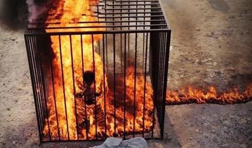 حرق الكساسبة داعش