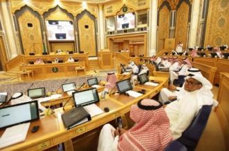 الشورى يطالب بوثيقة لمحددات السياسة الخارجية السعودية إقليميًا ودوليًا - المواطن