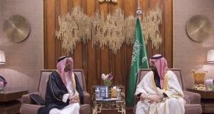 #محمد_بن_سلمان يبحث التعاون مع وزير الشؤون الإسلامية بموريشيوس