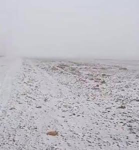 برودة الطقس تدفع أهالي #عسير للهرب إلى سواحل تهامة77