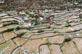 شاهد بالفيديو والصور.. هكذا الريف شمال أبها - المواطن