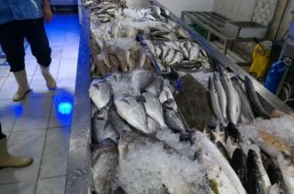 جولة على سوق أسماك مكة تسفر عن مصادرة 280 كيلو - المواطن