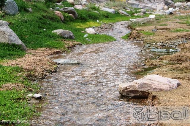 جبال الشفا بمحافظة الطائف8