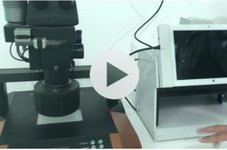 شاهد بالفيديو .. 4 أجهزة أبرزها عين الصقر تكشف تزوير الإقامات والجوازات - المواطن