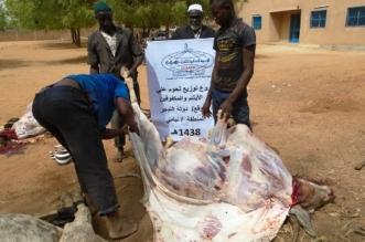 """بالصور.. 250 مكفوفًا نيجريًا يستفيدون من لحوم """"الندوة العالمية"""" - المواطن"""