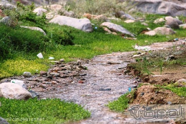 جبال الشفا بمحافظة الطائف9