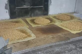 بالصور.. ضبط عمال يحمصون المكسّرات بمسكنهم ومصادرة 1360 كيساً - المواطن
