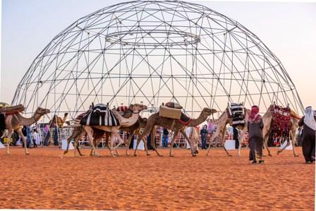 الإجازة تُـنْعِشها .. ارتفاع مبيعات المطاعم بمهرجان الملك عبدالعزيز للإبل 70%