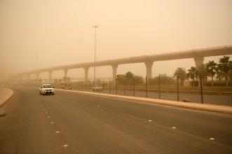 اثنين شديد الحرارة.. وغبار وسحب رعدية على هذه المناطق - المواطن