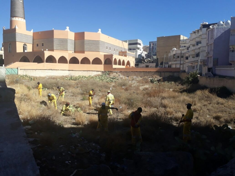 أمانة عسير تُرحِّل أكثر من 180 متراً مكعباً من المخلفات بمقابر أبها - المواطن