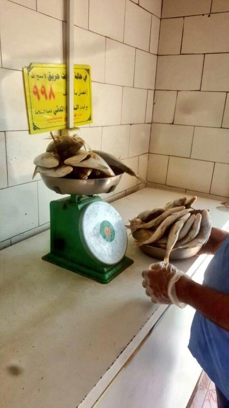 بلدية محايل تصادر لحومًا غير صالحة للاستهلاك الآدمي