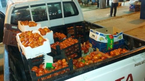 بلدية القوز تصادر نصف طن من الطماطم الفاسد - المواطن