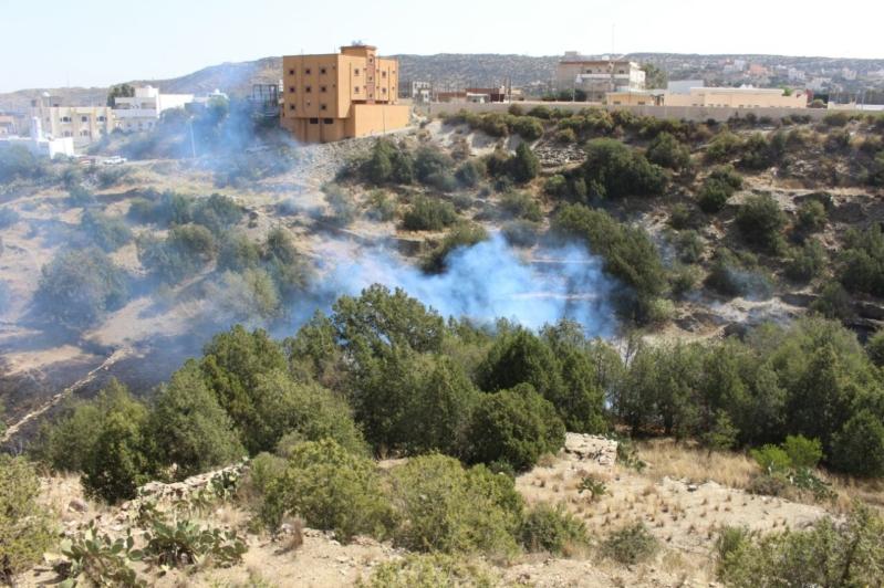 اشتعال حريقين في وادي العارجة وقرية العيص بمنطقة الباحة