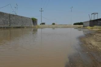 بالصور.. حي العباسية بصامطة يشكو الإهمال ونقص الخدمات - المواطن