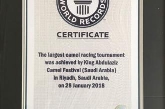 6120 مطية تحقق الرقم القياسي العالمي لجائزة الهجن بمهرجان الإبل - المواطن
