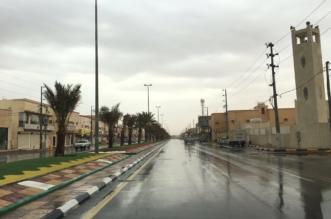 هطول أمطار متفرقة على منطقة القصيم - المواطن
