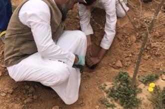 بالصور.. عائلة تحوّل الرحلات البرّية إلى مبادرة جماعية لزراعة الشتلات بعودة سدير - المواطن