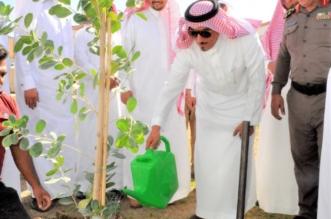 بالصور.. تدشين حملة المليون شجرة بخميس مشيط - المواطن