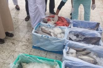 بالصور.. أنظمة إلكترونية للكشف على عينات الأغذية في مكة - المواطن