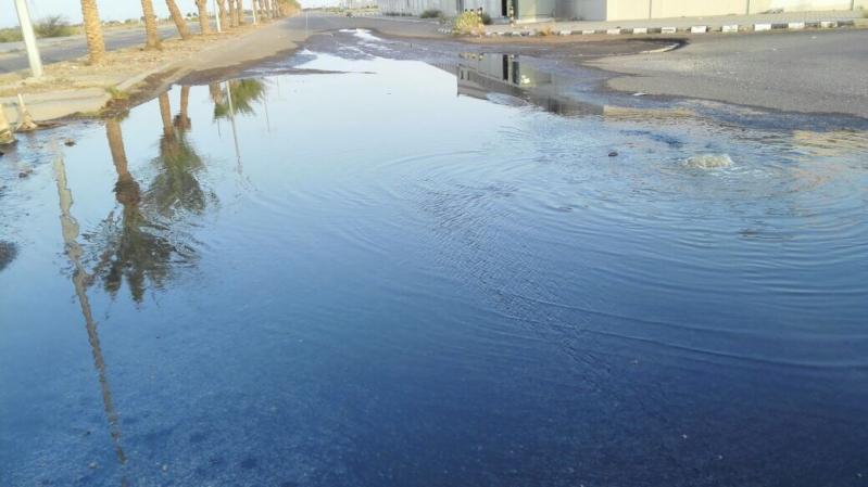 """بالفيديو والصور.. مياه الصرف تحاصر الطلاب والأهالي هجروا منازلهم في """"حصمة"""" جازان"""