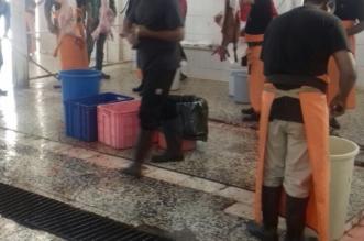 ضبط 10 مسالخ عشوائية في الأحساء بأول أيام عيد الأضحى - المواطن