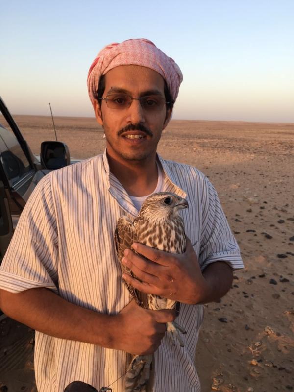 بالصور .. 4 مواطنين يتمكنون من صيد طير حر وبيعه بـ 100 الف ريال في رفحاء