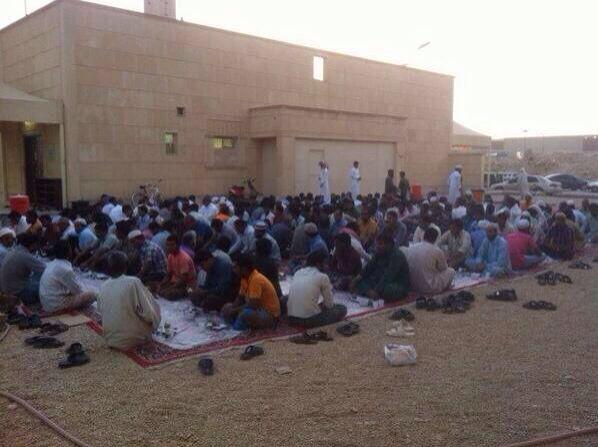شهار اسلام 374 شخصا بتعاوني العزيزية