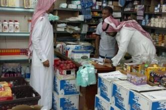 إغلاق 15 محلًّا مخالفًا في بحر أبو سكينة - المواطن