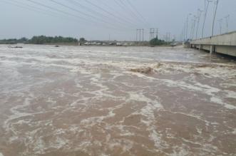 سيول متوقعة.. أكثر من 8 ساعات من الأمطار الغزيرة على جازان - المواطن