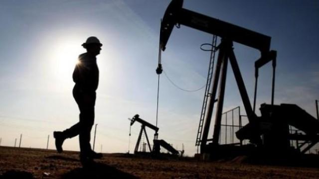 Oil-Digging-620x330