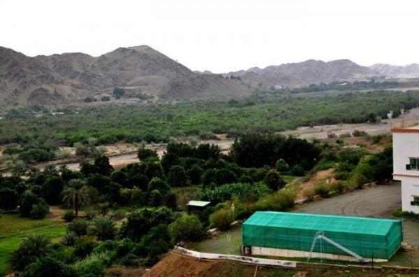 قرية الاحسبة