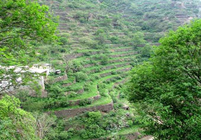 فريق وزاري يبحث مواجهة التعديات على الأراضي الحكومية في عسير - المواطن