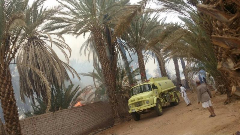 بالصور .. السيطرة على حريق بمزرعتي نخيل مثمر بمغيراء المدينة