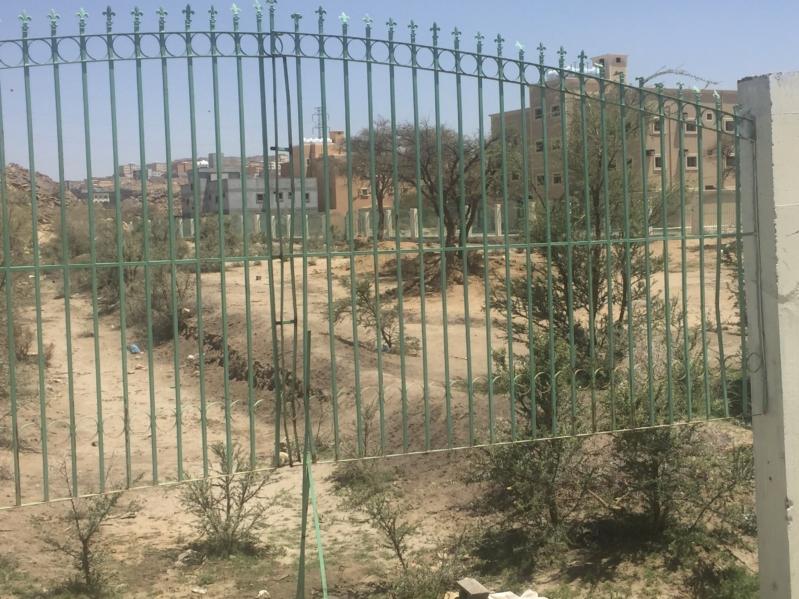 أهالي وزوار مهرجان أحد رفيدة: ننتظر فعاليات جديدة - المواطن