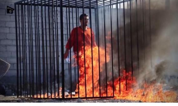 large-حرق الطيار الأردني معاذ الكساسبة