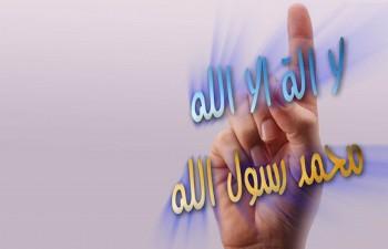 """12 من مختلف الجنسيات يُشهرون إسلامهم بـ""""دعويّ صبيا"""" - المواطن"""