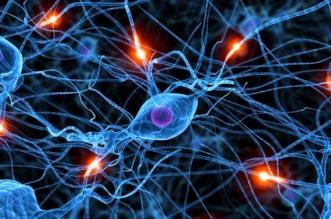 البلازما والخلايا الجذعية أحدث تقنية لمكافحة التقدم بالعمر - المواطن